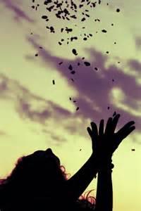 Flowers thrown in air